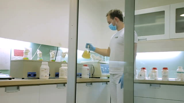 determination of food quality in the laboratory - penicillin stock videos and b-roll footage