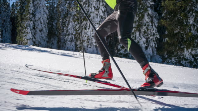 Determined cross country skier skate skiing uphill alongside a forest