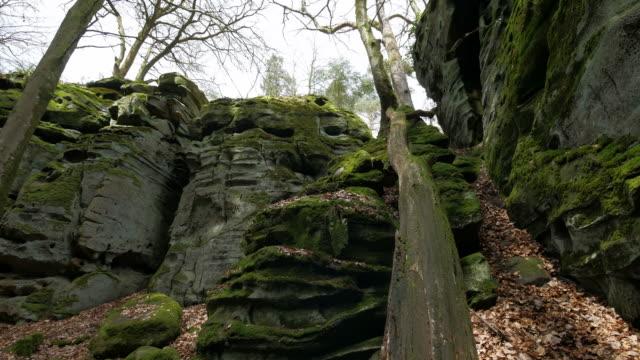 devil's gorge or teufelsschlucht, ferschweiler plateau, south eifel nature park - geschützte naturlandschaft stock-videos und b-roll-filmmaterial