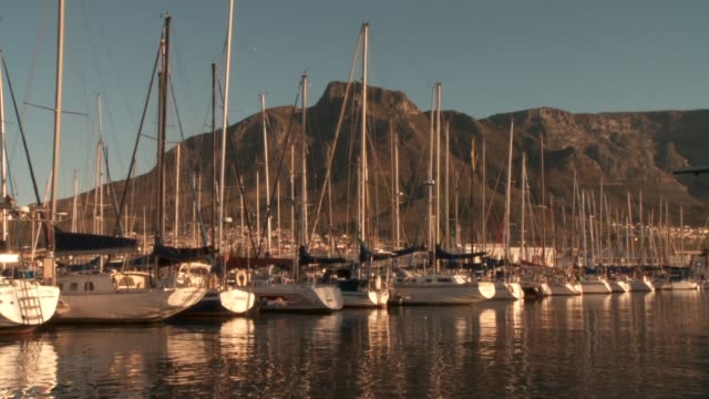 Devil's Peak looms over sail-boats in a harbour. Available in HD.
