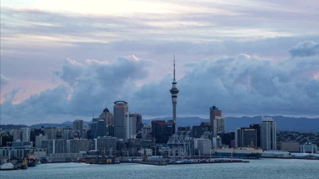 devonport, auckland - timelapse - auckland ferry stock videos & royalty-free footage