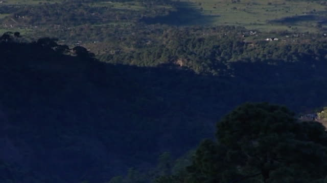 dharamsala landscapes. forested dhauladhar mountains and kangra valley on a sunny day. - 東点の映像素材/bロール