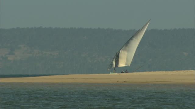 a dhow sails past a sandbank on the zambezi river delta. - ダウ船点の映像素材/bロール