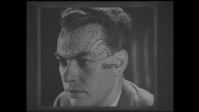 vídeos y material grabado en eventos de stock de diagram of the interior of the ear and neurons connecting it to the brain of a man with arrows pointing at various parts - 1940 1949