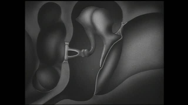 diagram of the interior of the ear with arrows pointing at different parts - 1940 1949 bildbanksvideor och videomaterial från bakom kulisserna