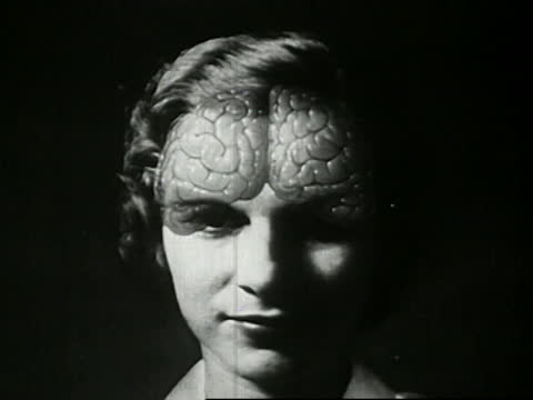 1941 - diagram of woman's face with superimposed animated brain, showing frontal lobes - biomedical animation stock videos & royalty-free footage