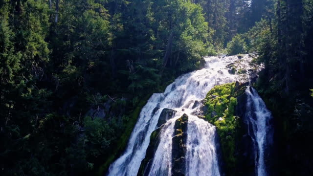 Diamond Creek Falls, Oregon - Drone Shot