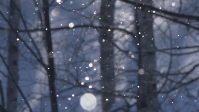diamond dust in biei town, hokkaido - クリスタル点の映像素材/bロール