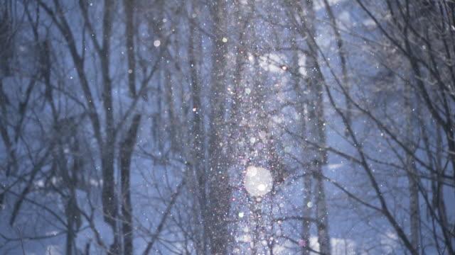 diamond dust in biei town, hokkaido - biei town stock videos & royalty-free footage