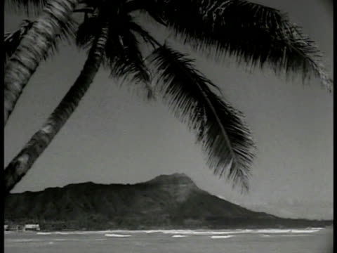 vidéos et rushes de diamond head mountain hawaii palm tree fg. newspaper 'flags changed old glory is now the ensign of the hawaiian islands.' american flag on newspaper. - îles hawaï