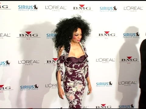 Diana Ross at the Clive Davis' 2005 PreGrammy Awards Party arrivals at the Beverly Hilton in Beverly Hills California on February 12 2005