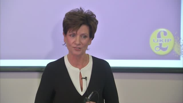diane james elected new leader of ukip diane james mep press conference sot it's my perogative and i choose to change the program no not a purge - diane james politik stock-videos und b-roll-filmmaterial