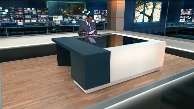 diane james resigns as ukip leader after 18 days reporter to camera - diane james politik stock-videos und b-roll-filmmaterial