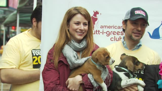 diane neal, jorge bendersky, jennifer jablow, mya, jen araki, lorenzo borghese and beth ostrosky stern at the mya hosts north shore animal league's... - 歌手 マイア点の映像素材/bロール
