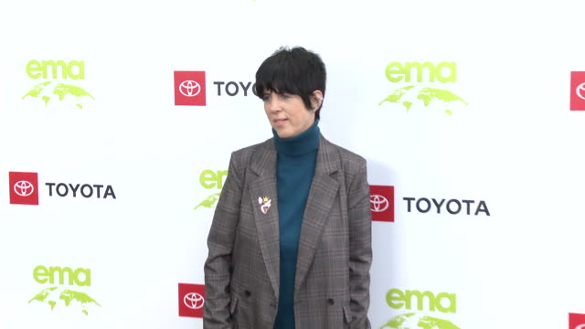 diane warren at the environmental media association 2nd annual honors benefit gala in los angeles ca - diane warren stock videos & royalty-free footage