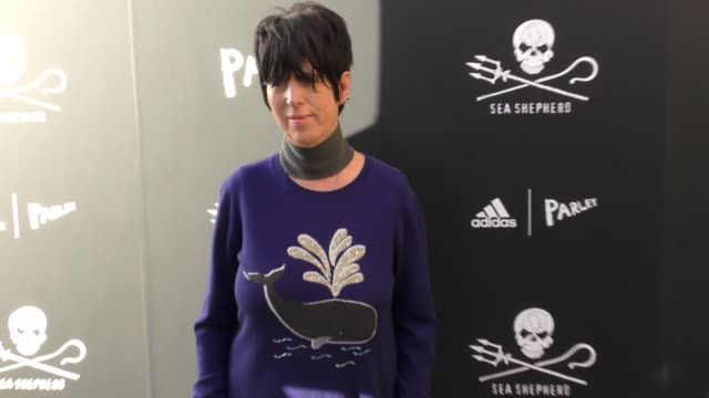 dianne warren at the sea shepherd conservation society's 40th anniversary gala for the oceans at montage beverly hills on june 10 2017 in beverly... - montage beverly hills video stock e b–roll