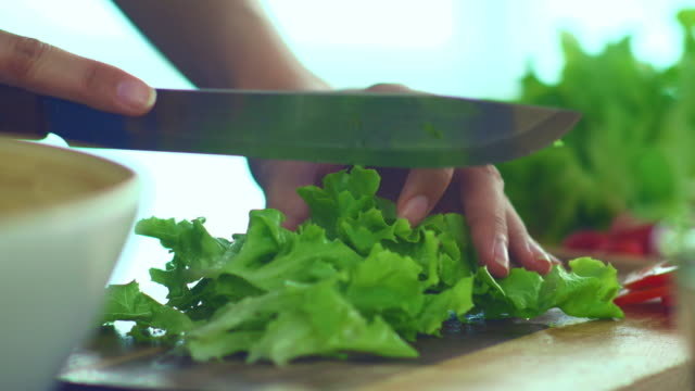vídeos de stock e filmes b-roll de dietary fiber : cutting lettuce for salad - alface