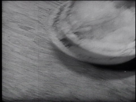 1945 montage different food and beverages being prepared and served / united states - frank capra video stock e b–roll