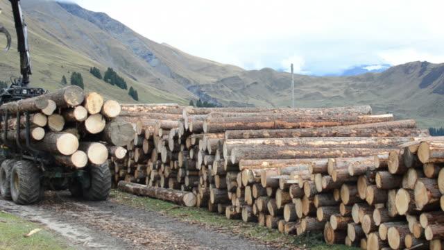 Digger Maschine Stapeln tree trunk