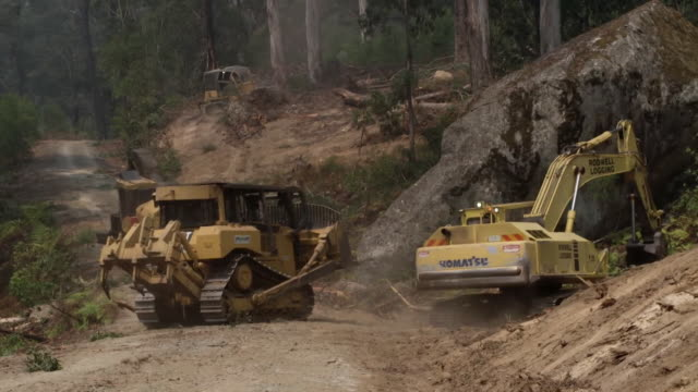 """diggers remove trees and scub land to create breaks in the forest to help prevent further bushfires, new south wales - """"bbc news"""" stock videos & royalty-free footage"""