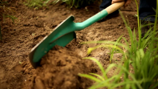 digging in the dirt - digging stock videos & royalty-free footage
