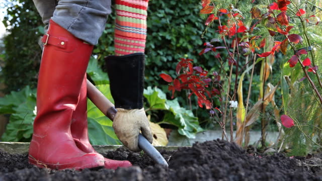 stockvideo's en b-roll-footage met digging in the garden (hd1080) - schoppen lichaamsbeweging