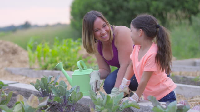 digging in the garden - gardening stock videos & royalty-free footage