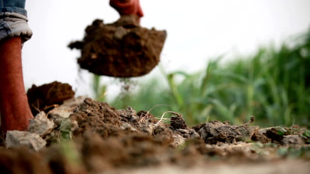 digging in wet soil - agricultural equipment stock videos & royalty-free footage