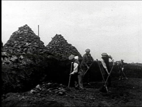 digging peat and loading onto a cart, shoveling, fuel, labor, workers, gathering, donkey cart, rural. digging peat and loading onto a cart on january... - digging stock videos & royalty-free footage