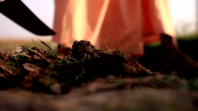 digging - fertilizer stock videos & royalty-free footage