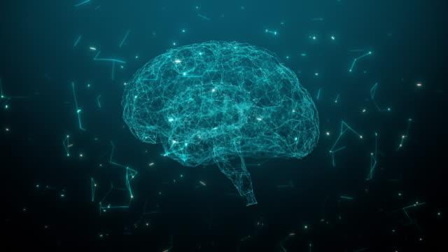 vídeos y material grabado en eventos de stock de animación digital del modelo cerebral con neurona y receptor - corteza cerebral