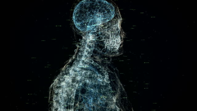 digital human body - human brain stock videos & royalty-free footage