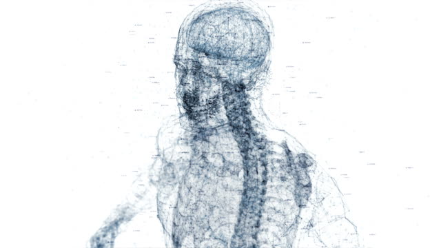vídeos de stock e filmes b-roll de digital human body - neurologista