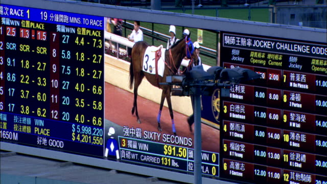 vídeos y material grabado en eventos de stock de a digital screen displays horse racing results and a streaming video of grooms cooling down racehorses. available in hd. - apuestas deportivas