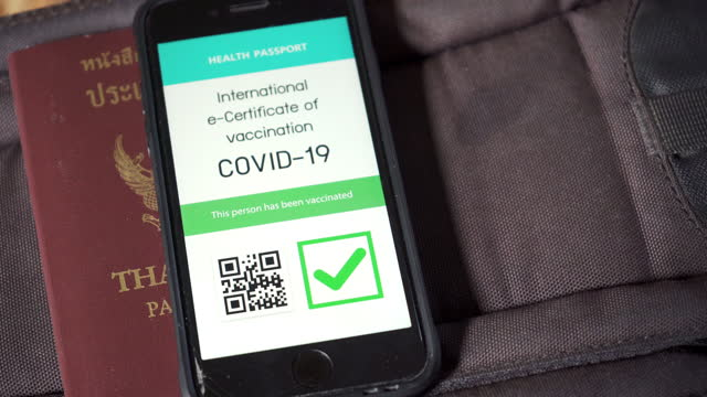 digital vaccine passport verification covid-19 on smartphone at the bag - freedom stock videos & royalty-free footage