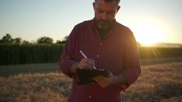 vídeos de stock, filmes e b-roll de agricultor trabalhador diligente verificando a qualidade do campo de trigo e anotando estatística em tablete digital - internet das coisas