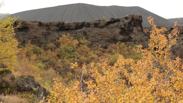Dimmuborgir Iceland unusual lava rock formations trail fall colors windy