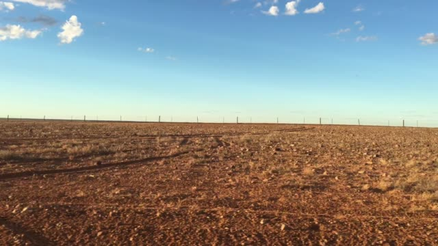 dingo fence near coober pedy in south australia outback - coober pedy stock videos & royalty-free footage