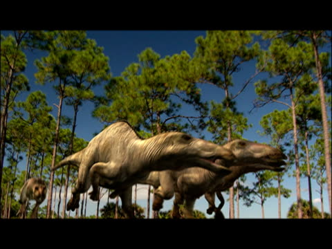 cgi, composite, dinosaur chasing for three smaller dinosaurs  - eoraptor stock videos and b-roll footage