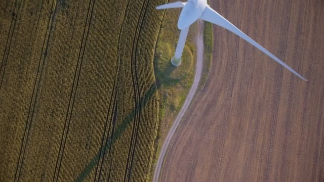 vídeos de stock e filmes b-roll de directly above of agriculture cornfield and wind turbine on the island fehmarn - schleswig-holstein , germany - sustainable resources