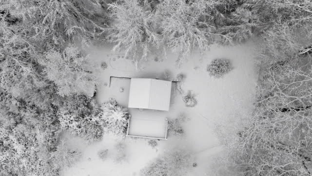 Directly above shot of snow covered house and trees