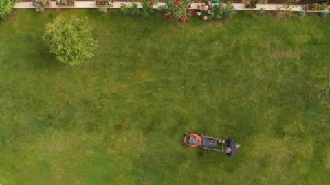 vidéos et rushes de directement au-dessus de vue d'un homme utilisant la tondeuse à gazon dans un jardin - jardin de la maison