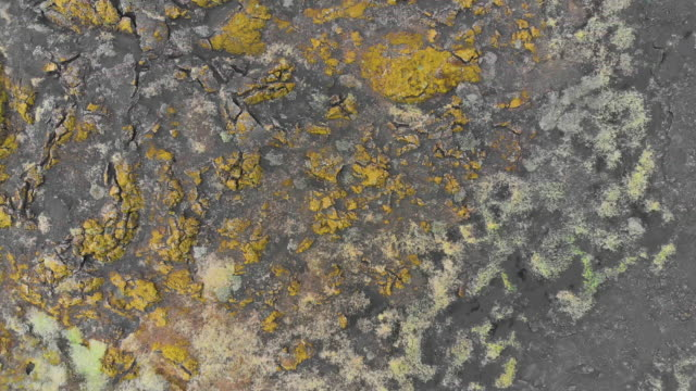 vídeos de stock e filmes b-roll de directly above view of crusty land surface in iceland - geografia física