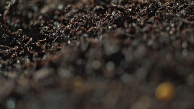 vidéos et rushes de dirt explosion slow motion macro explosion - soil