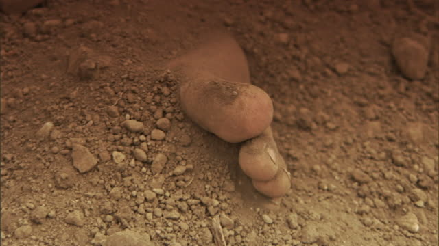 vídeos de stock e filmes b-roll de dirt is thrown onto the exposed toes of a dead body in a grave. - enterrado