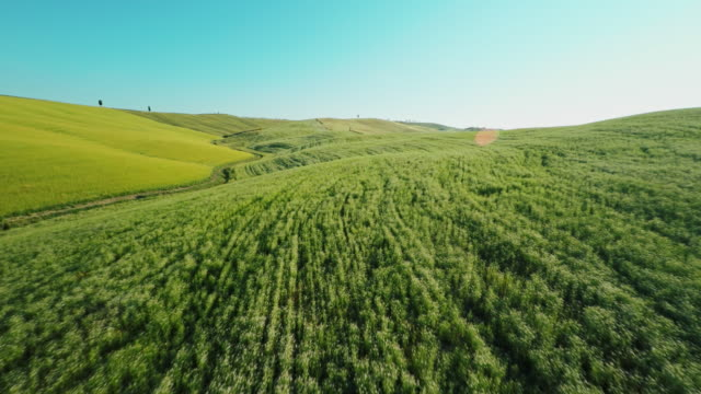 aerial schotterstrecke entlang meadows in der toskana - multikopter stock-videos und b-roll-filmmaterial