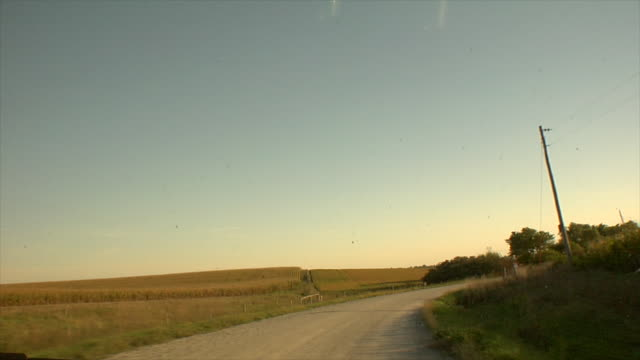 Dirt road green brown fields w/ fences trees utility poles wires sun flare