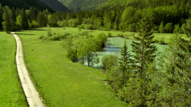 ws aerial dirt road surrounded with pastures and pond - slovenia meadow stock videos & royalty-free footage