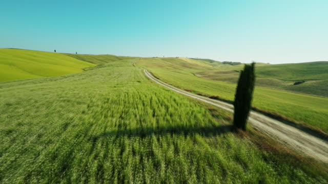 aerial dirt road through green meadows - tuscany stock videos and b-roll footage