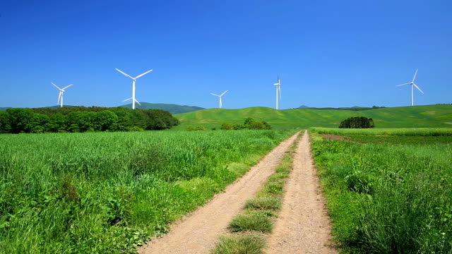Dirt road through the meadow to the windmills
